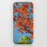 iPhone & iPod Case featuring My Fall Leaves by Stacy Frett