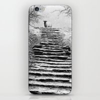 Dovedale Steps iPhone & iPod Skin