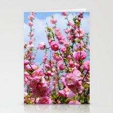 Sakura Branch Stationery Cards