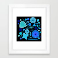 Diatoms Framed Art Print