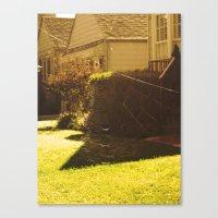 spiderweb. Canvas Print