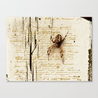 Spider Letter Canvas Print