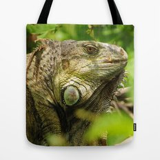 Costa Rican Iguana Tote Bag