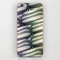 Humbug iPhone & iPod Skin