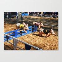 Pig Race Canvas Print