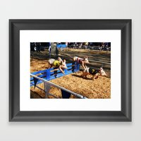 Pig Race Framed Art Print