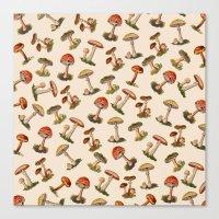 Magical Mushrooms Canvas Print