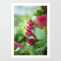 Tropical Pink Art Print