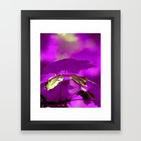 Purple Alchemy  Framed Art Print