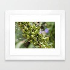 Extreme Perspective Plant Stem Framed Art Print