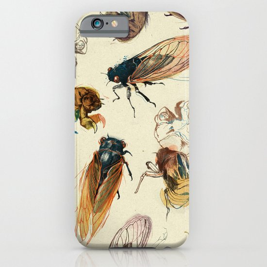summer cicadas iPhone & iPod Case