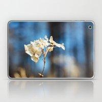 Summer's Ghost I Laptop & iPad Skin