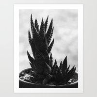 Cactus 2016  Art Print