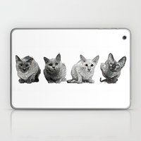 Four Gorgeous Cats Sitting In A Row Laptop & iPad Skin