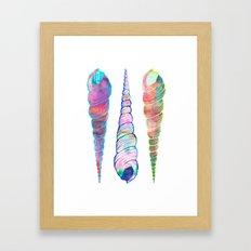 Seashell #6A Framed Art Print