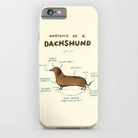 iPhone Cases featuring Anatomy of a Dachshund by Sophie Corrigan