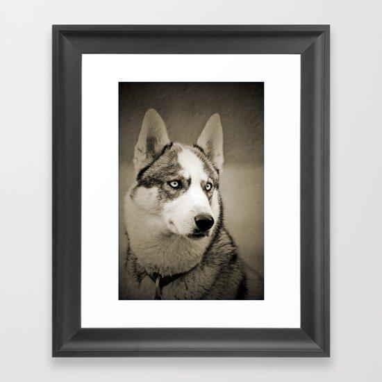 Siberian husky 2 kh6 framed prints