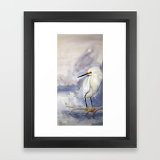 Great White Heron (Ardea alba) Framed Art Print