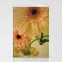 Baby-pink Daisy-petals ~… Stationery Cards