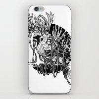 Rudolph Sparrow iPhone & iPod Skin