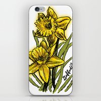Daffodils iPhone & iPod Skin