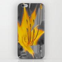 A Bit Of Yellow iPhone & iPod Skin