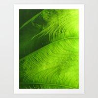 Lighted Pathways Art Print