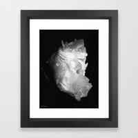 peony in the morning  Framed Art Print