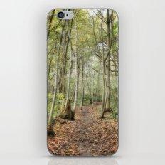 Wooded Path iPhone & iPod Skin