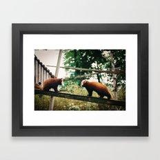 Stand off Framed Art Print