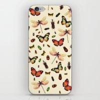 Insecta iPhone & iPod Skin