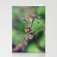 The Summer Bug Stationery Cards