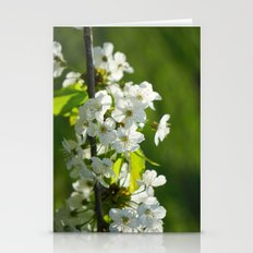 Pear Blossom Stationery Cards