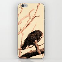 Turkey Vultures iPhone & iPod Skin
