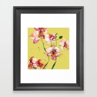 Pink Orchids in Yellow Framed Art Print