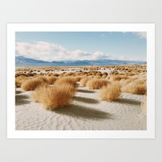 Paiute Land Art Print