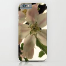 Spring Romance iPhone 6 Slim Case