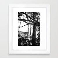 nature's grasp. Framed Art Print