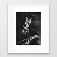 Standing Here On My Own Framed Art Print