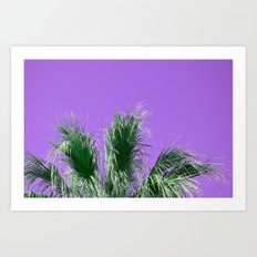 Palms on Purple Art Print