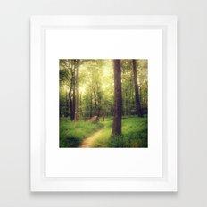Dreamy Fairy Forest Framed Art Print