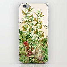 Terrarium  iPhone & iPod Skin