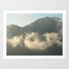 A Misty Morning Art Print