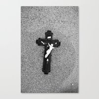 PFP#2779 Canvas Print