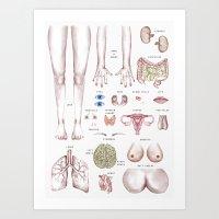 organ-ized Art Print