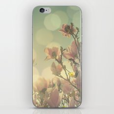 SPRING HEAVEN iPhone & iPod Skin
