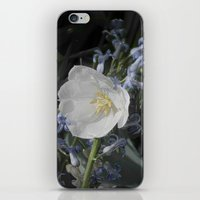 White Tulip iPhone & iPod Skin