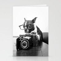 The Photogenic Understudy Stationery Cards