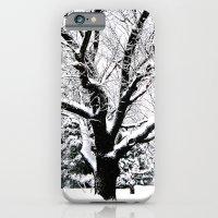 Snow Tree iPhone 6 Slim Case