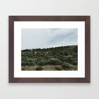 Nevada Horses Framed Art Print